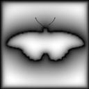 images/gradients/gradient_painter/shaped.png