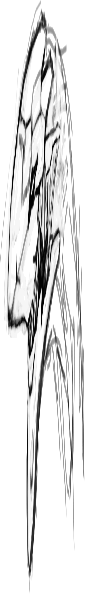 libs/image/tests/data/scaledownx_result.png