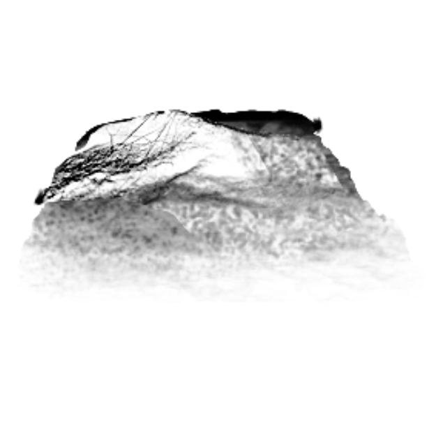 krita/data/brushes/rock.png